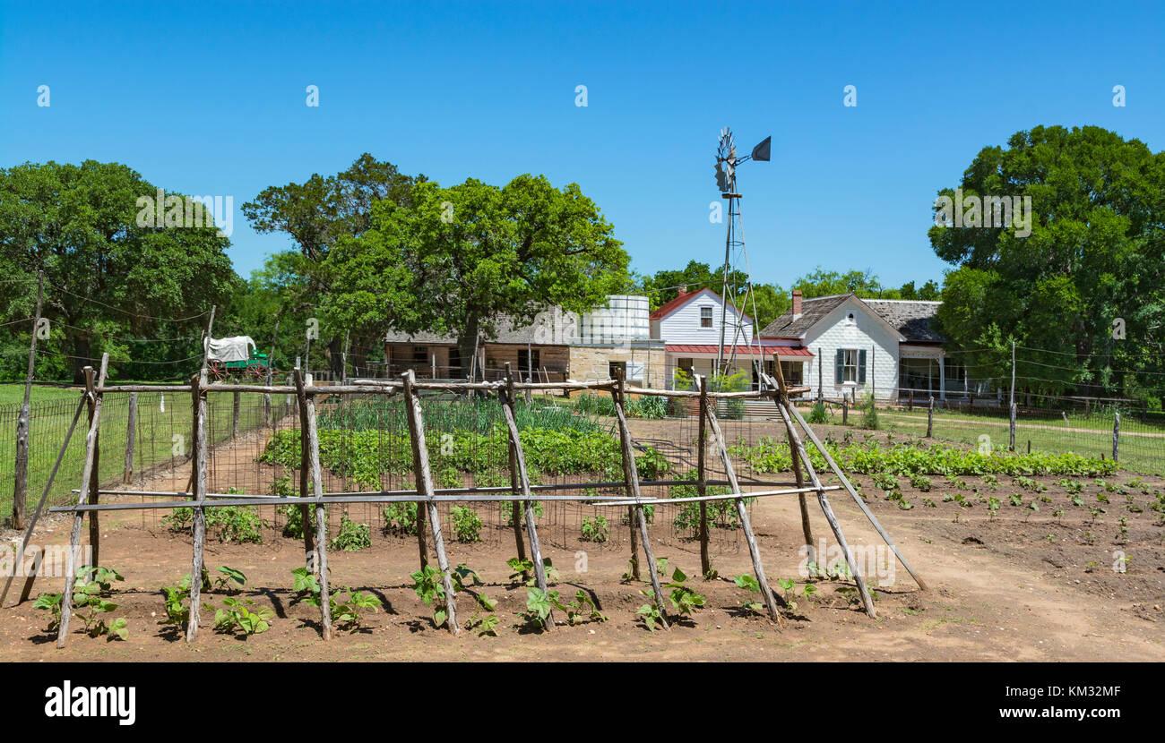 Texas, Stonewall, LBJ State Park and Historic Site, Sauer-Beckmann, Living History Farm, circa 1915-1918, vegetable - Stock Image