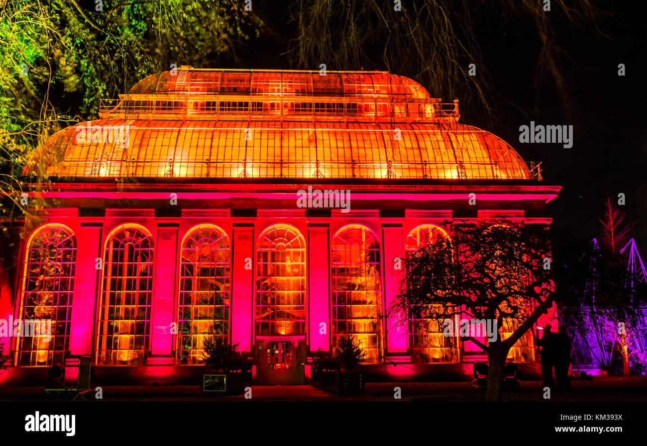 Victorian temperate palm glass house lit up for outdoor trail light show celebrating Christmas, Royal Botanic Garden, - Stock Image