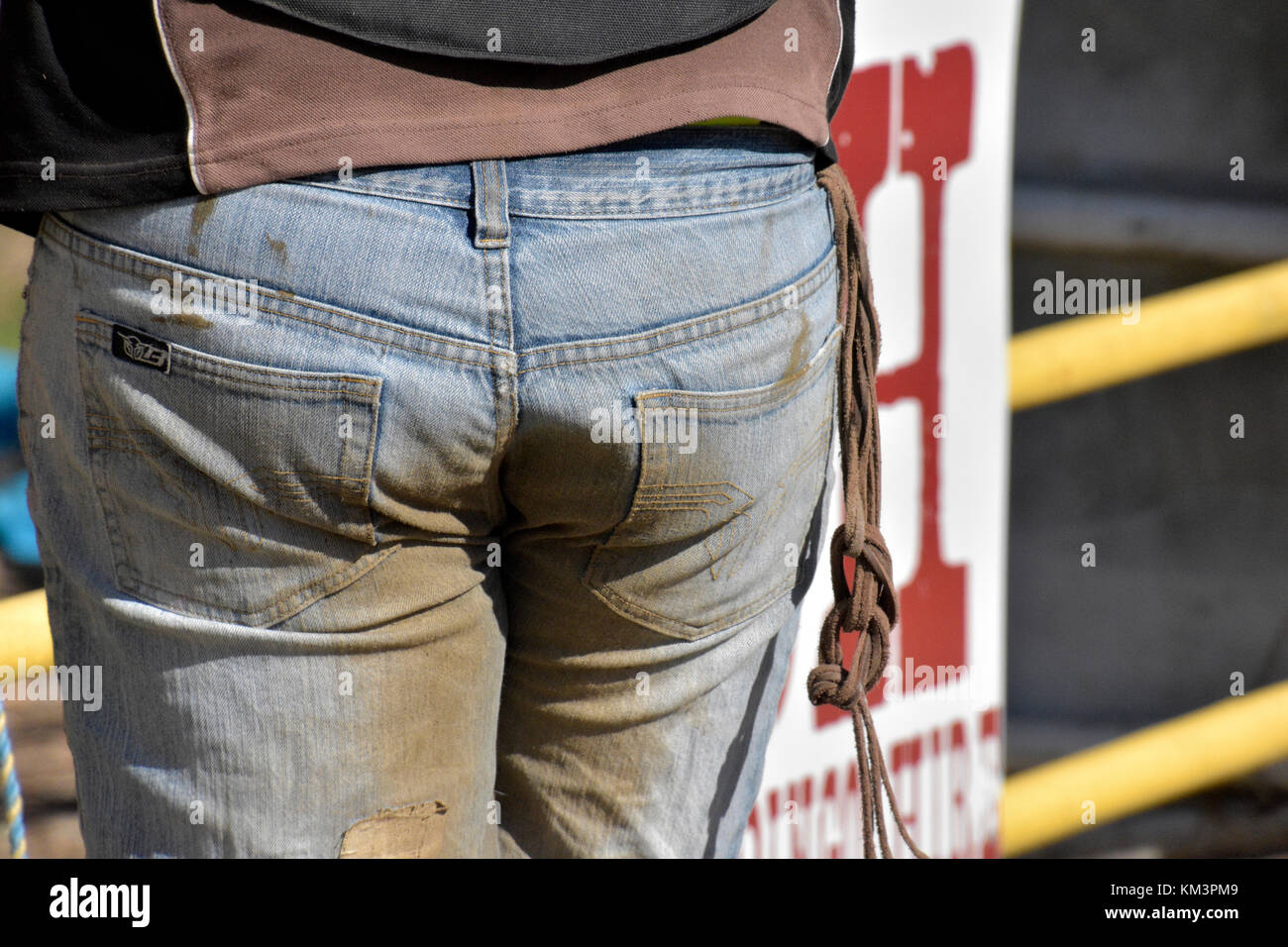 COWBOY BUMS IN DUSTY BLUE JEANS - Stock Image