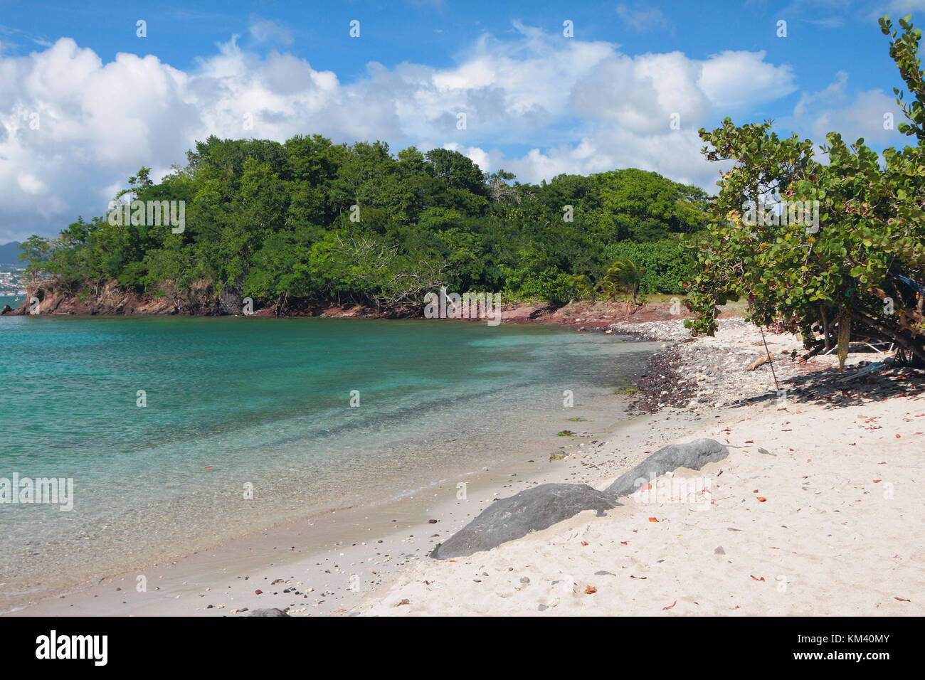 Sandy beach on tropical island. Pointe-du-Bout, Martinique - Stock Image
