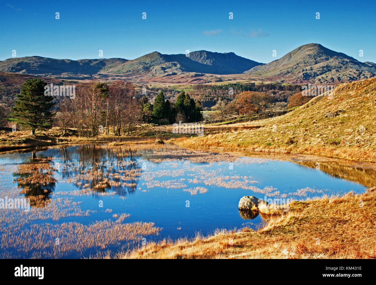The tranquillity of Kelly Hall Tarn - Stock Image