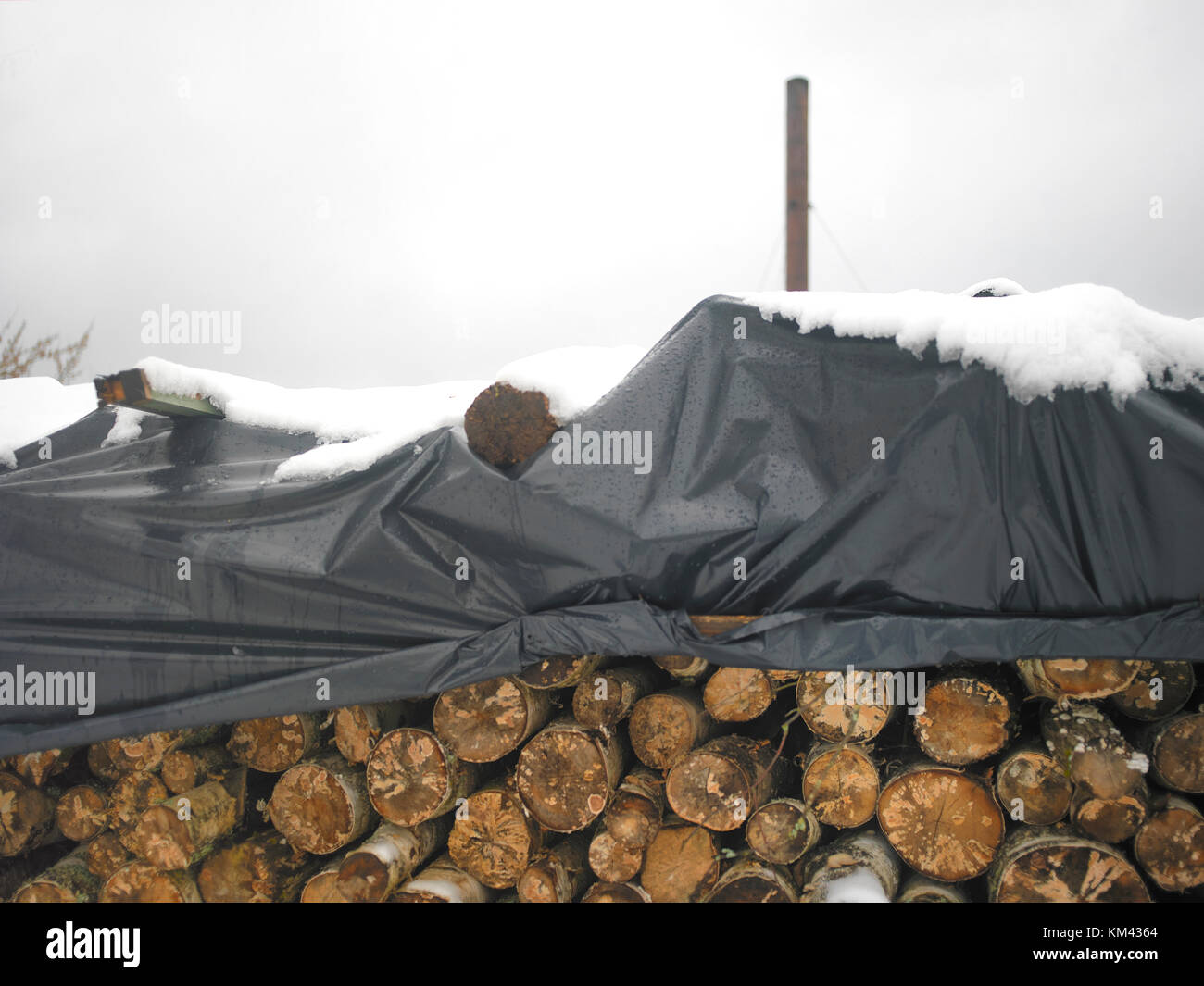 A Stack Of Firewood Covered With Cellophane Wrap And A