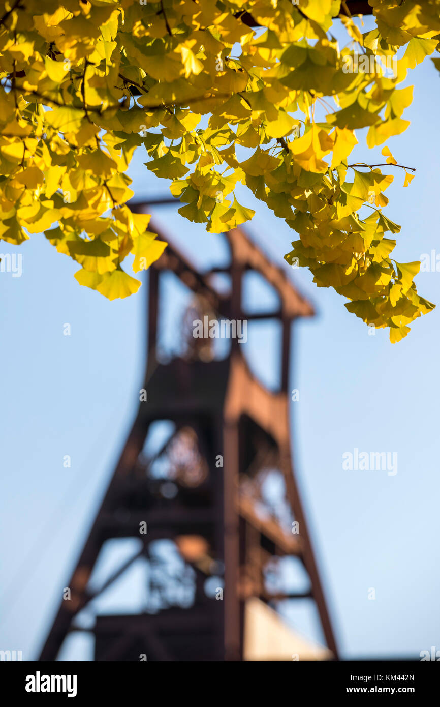 UNESCO world heritage site, Zeche Zollverein colliery in Essen, Germany, - Stock Image
