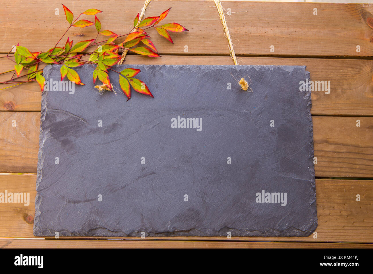 Rustic blank slate noticeboard hanging by twine on a wood background - Stock Image