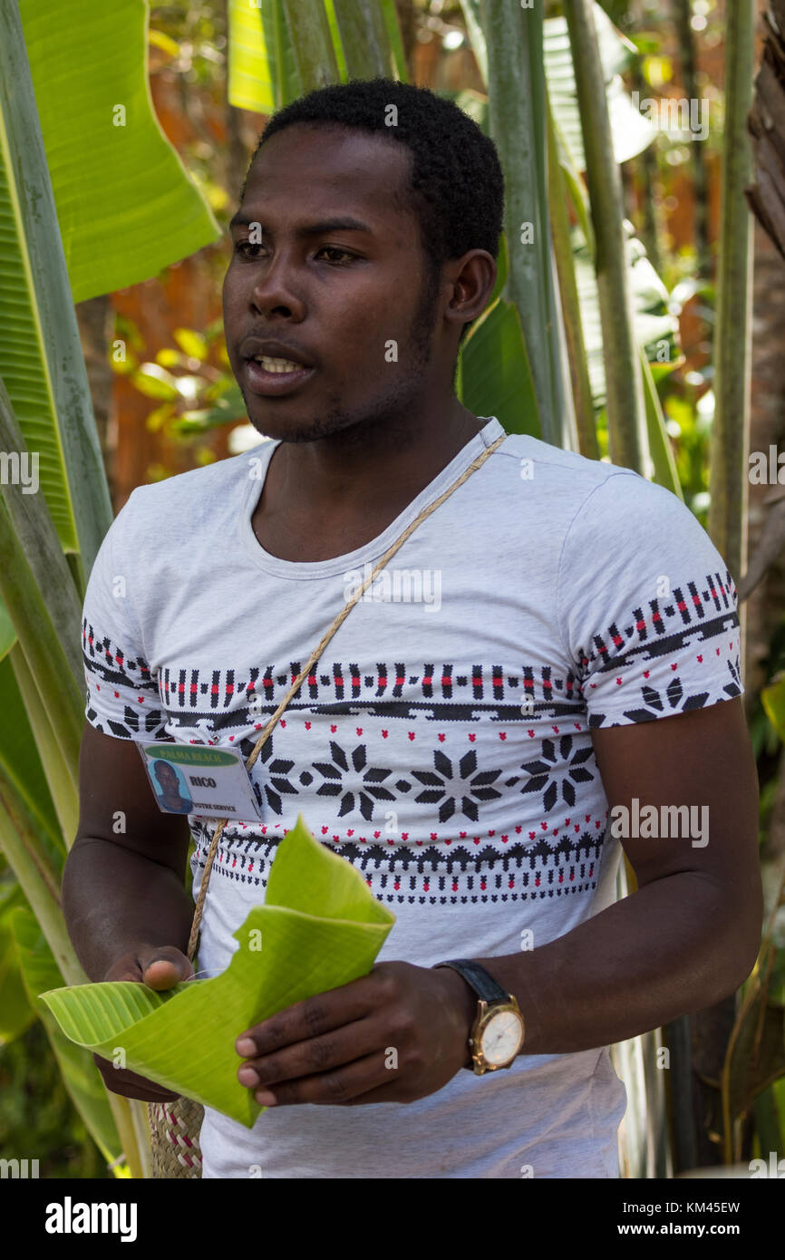 A young Malagasy tour guide showing tourists how to make a drinking cup with banana leaf. Madagascar, Africa. - Stock Image