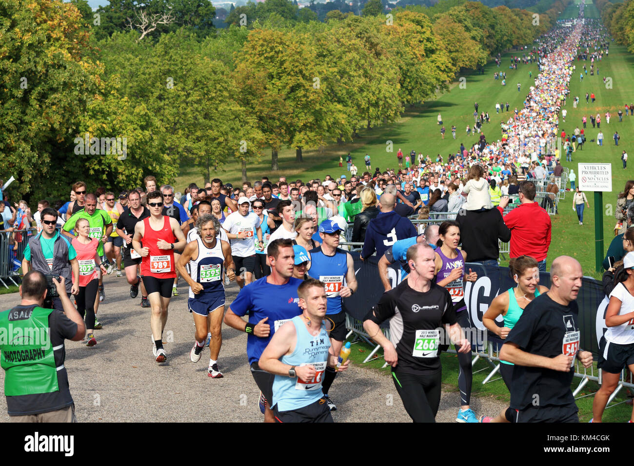Runners in a Charity Half Marathon on the Long Walk in Windsor Great Park, Berkshire - Stock Image