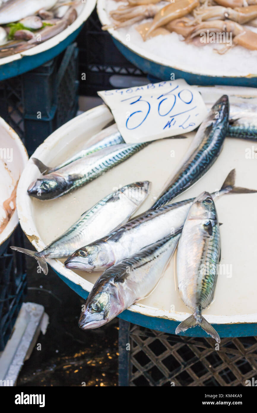 Fish stands in the open market of the historical streets of Naples in Italy. Anchovies displayed. - Stock Image