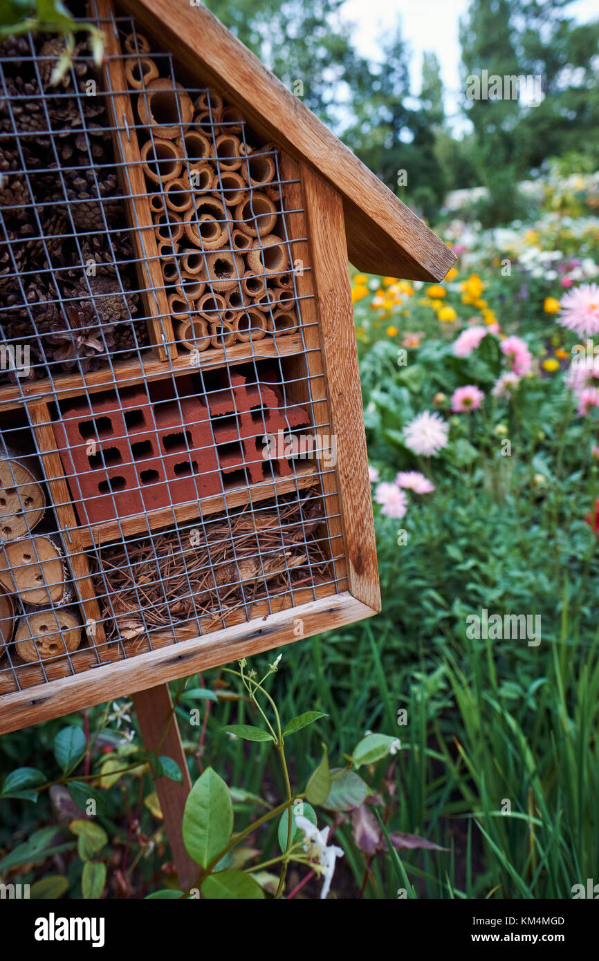 An insect hotel suitable for a variety of insects to nest or hibernate in a wildlife friendly garden, surrounded - Stock Image
