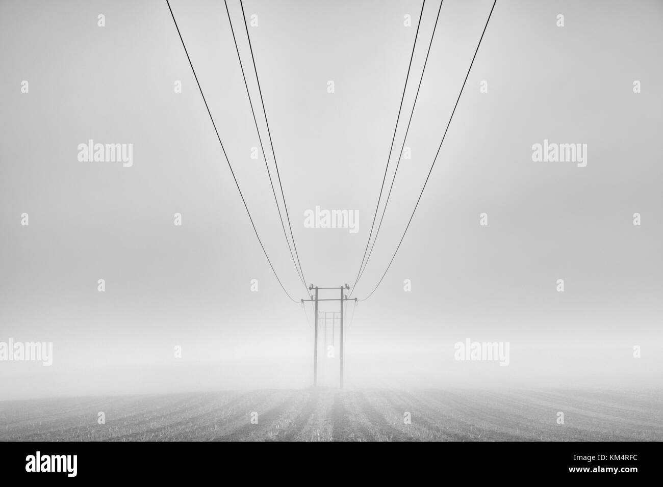 Symmetrical telephone wires on the fog - Stock Image