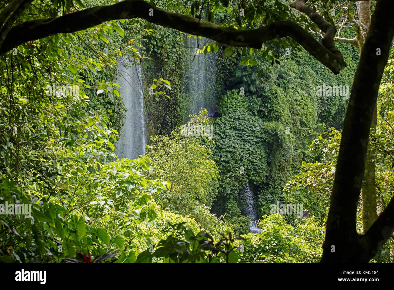 Benang Kelambu Waterfalls in tropical forest near the village Aik Berik, North Batukliang, Central Lombok, Indonesia - Stock Image