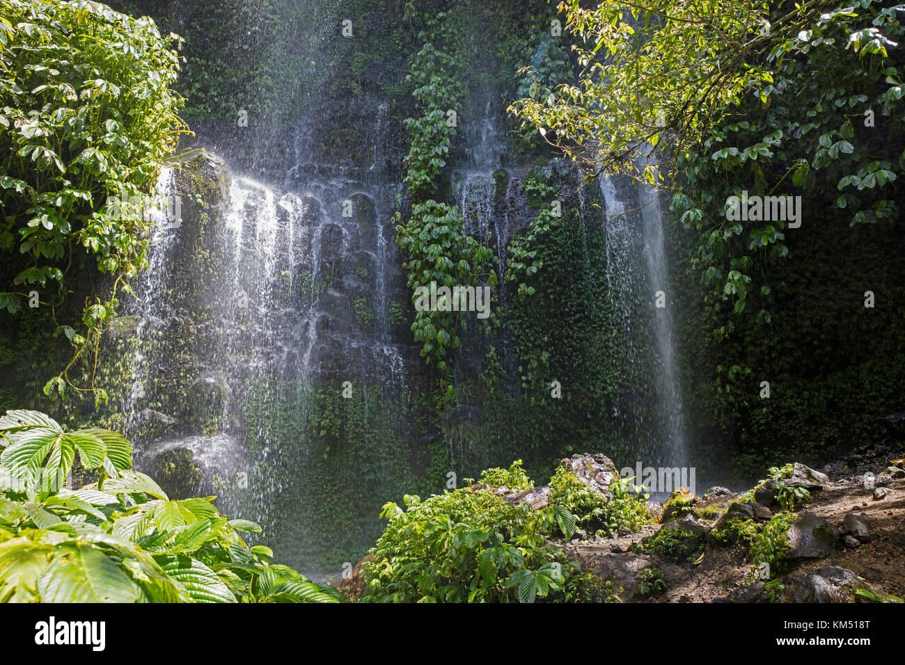 Benang Kelambu Waterfall in tropical forest near the village Aik Berik, North Batukliang, Central Lombok, Indonesia - Stock Image