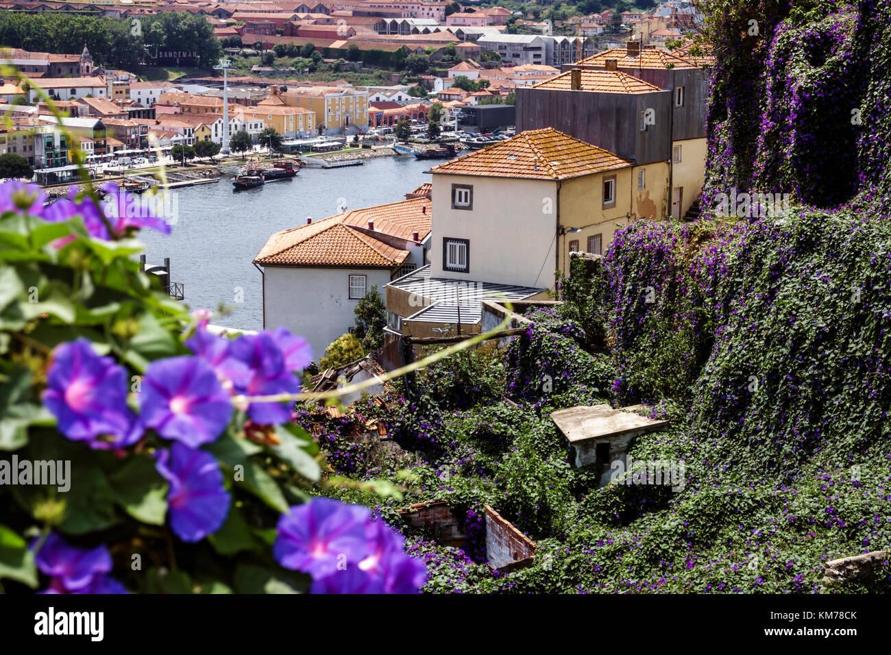Porto Portugal Douro River Barrio La Ribeira historic center residential apartment building city skyline rooftops Stock Photo