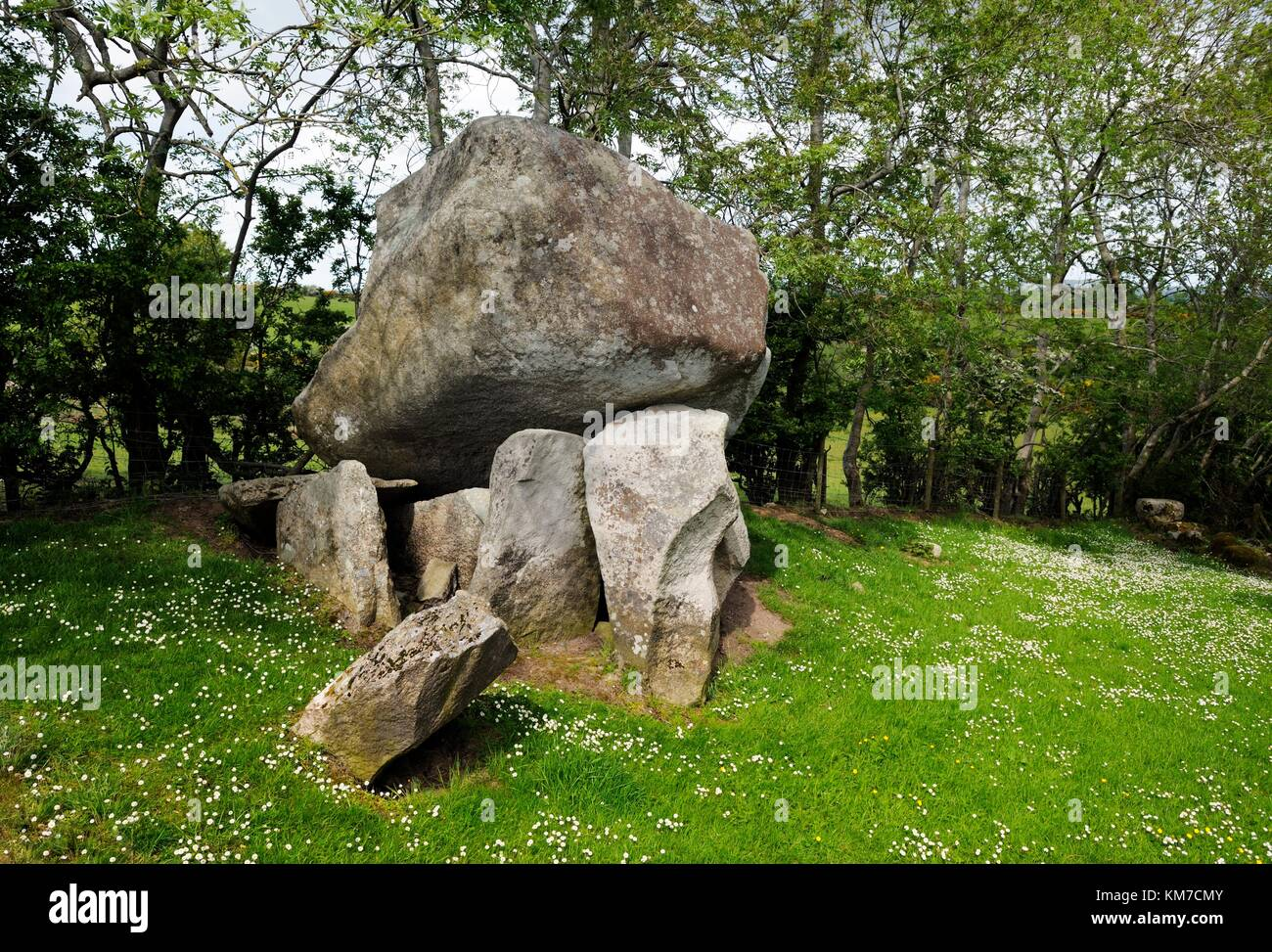 Goward Dolmen, also called Cloghmore Cromlech. Hilltown, County Down, Northern Ireland. Prehistoric megalithic burial - Stock Image