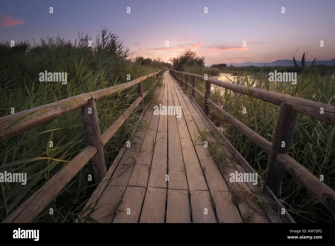 Fine art photography of a wooden path at sunset in a marsh in Alicante province, Spain. Stock Photo