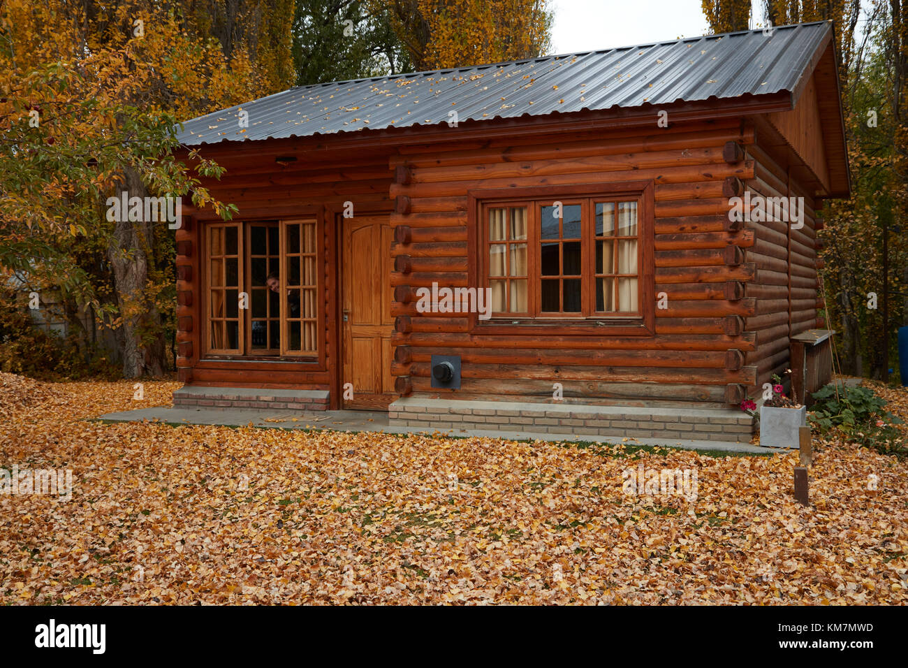 Log cabin and autumn leaves, El Calafate, Patagonia, Argentina, South America - Stock Image