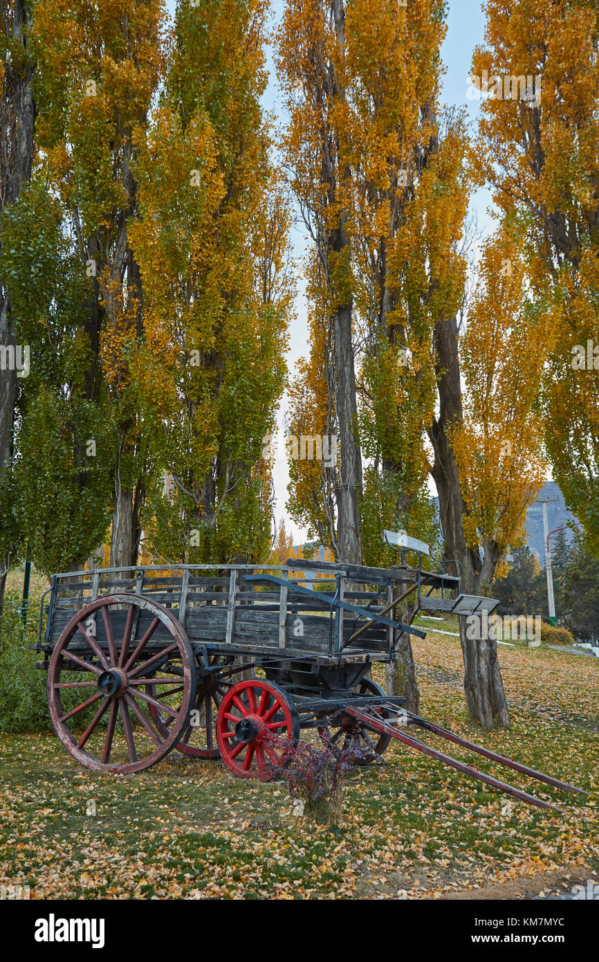 Poplar trees and old wagon, El Calafate, Patagonia, Argentina, South America - Stock Image