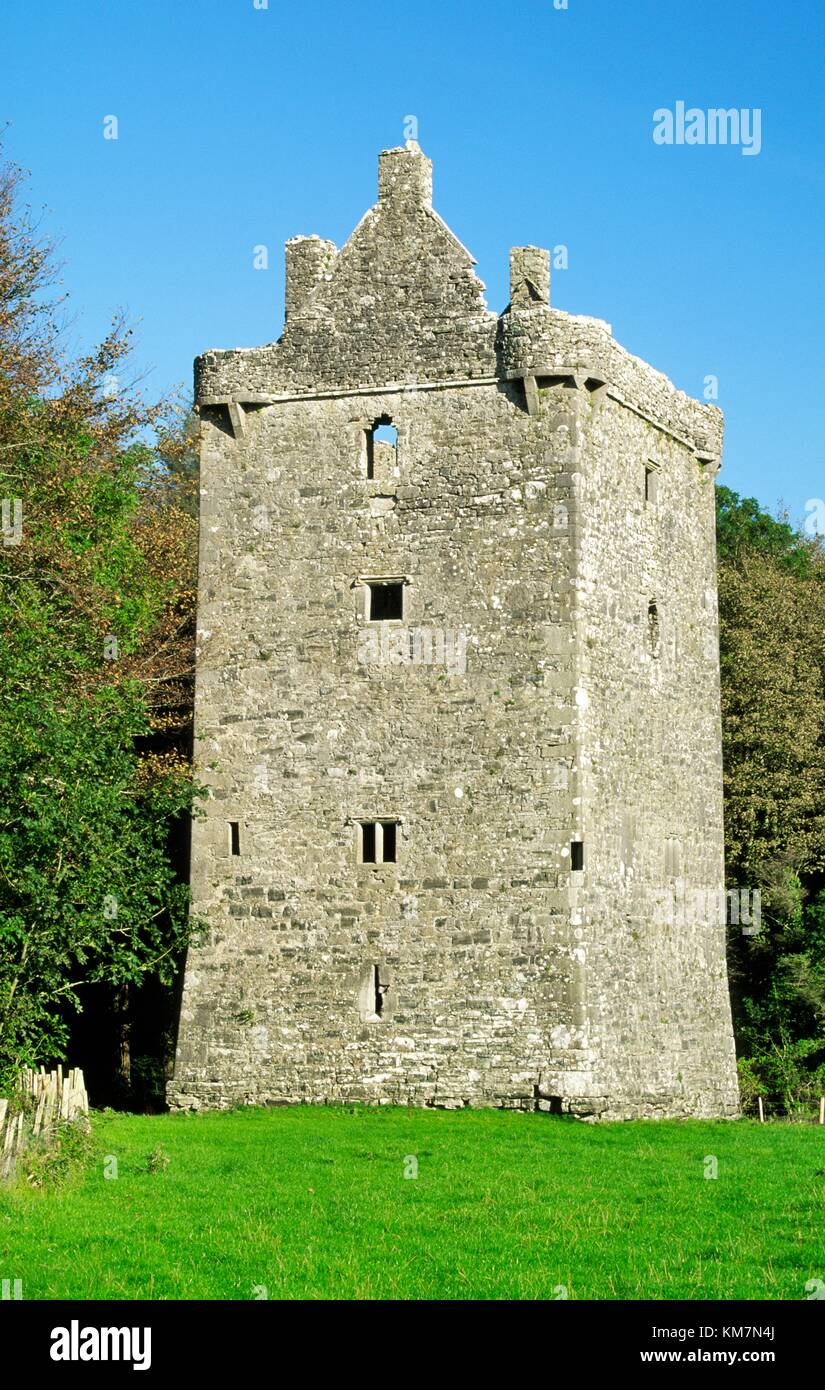 15th C Feartagar Castle, known locally as Jennings Castle, near Tuam, County Galway, Ireland. Once a Burke stronghold, Stock Photo