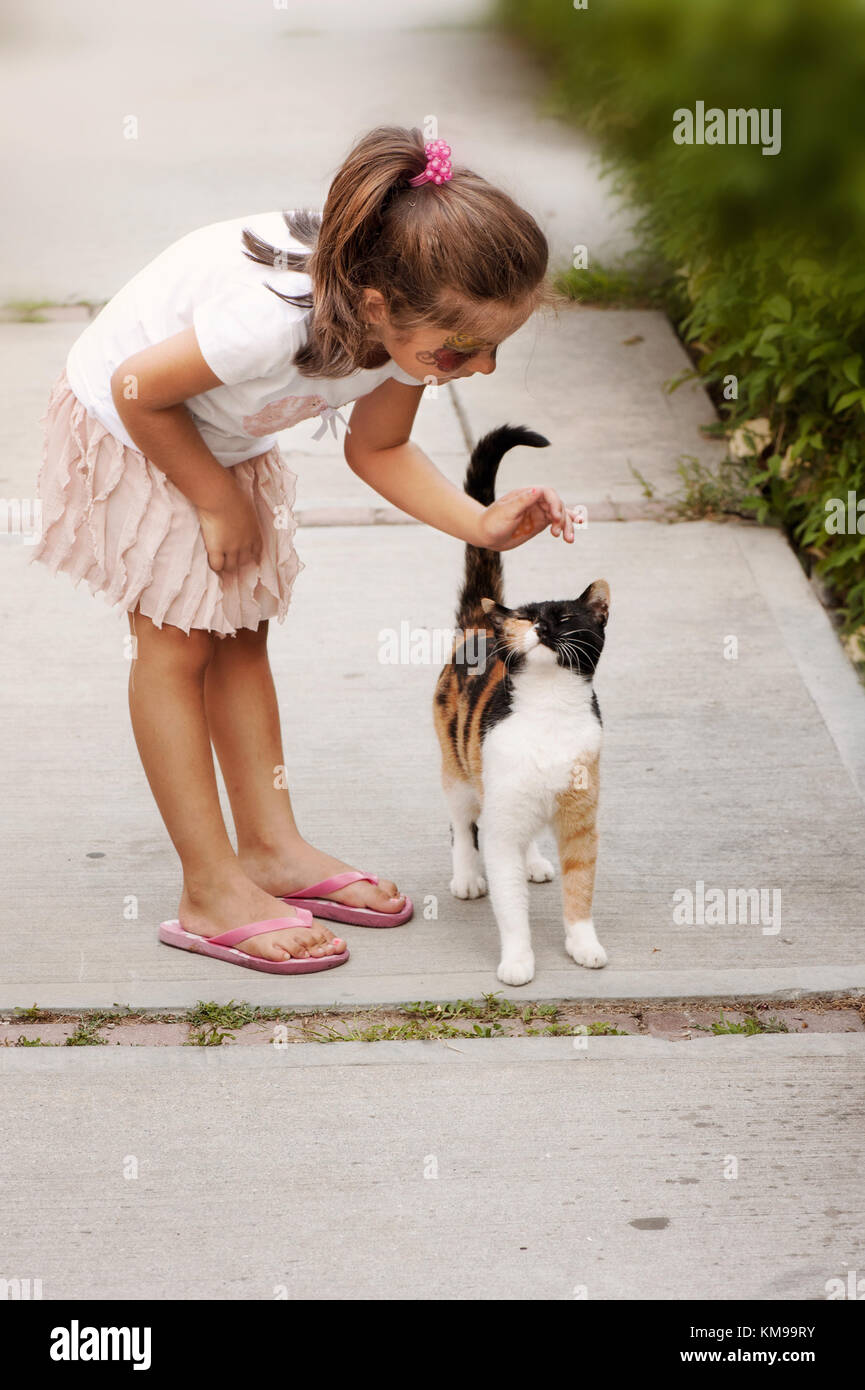 Little girl petting a cat - Stock Image