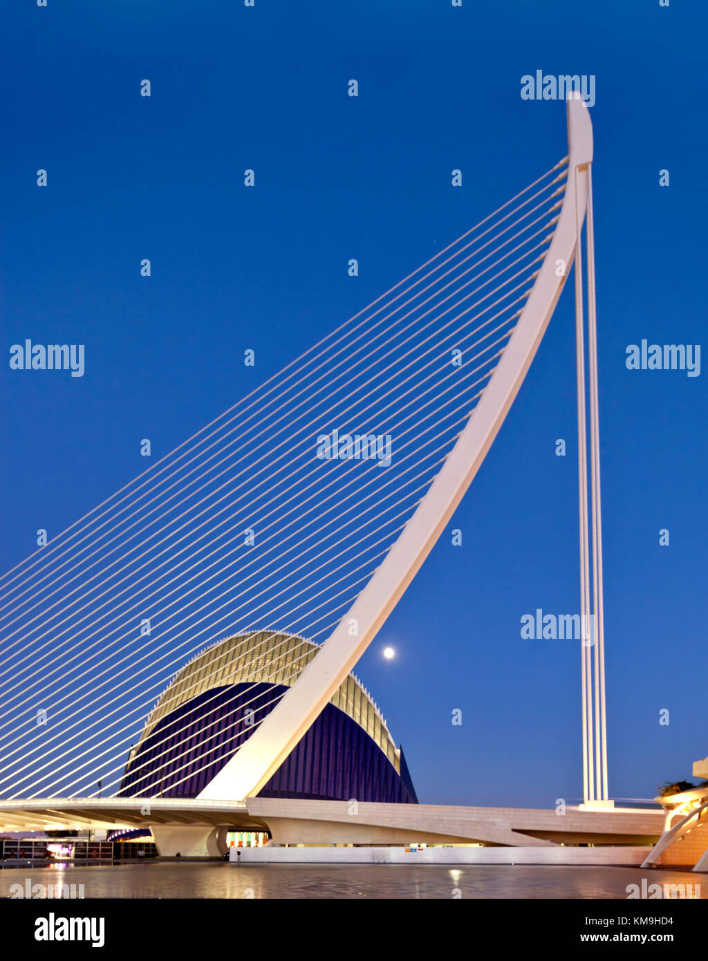 Agora, Puente de l Assut, bridge, City of sciences, Calatrava, Valencia, Spain Stock Photo
