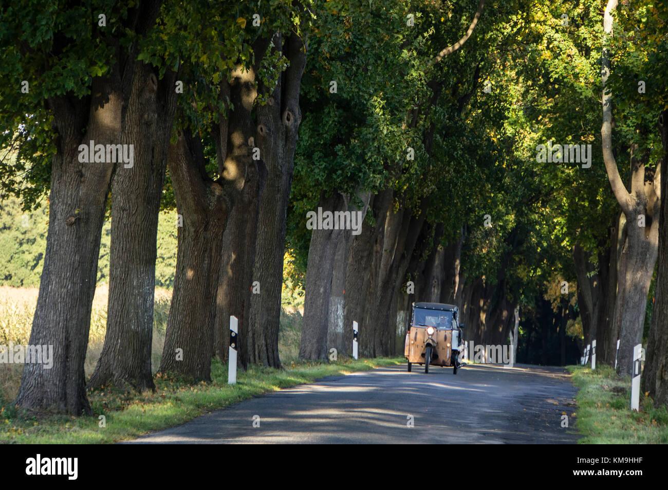 Maple Alley  with old DDR three wheeler,  Ruedniz, Brandenburg, Germany - Stock Image