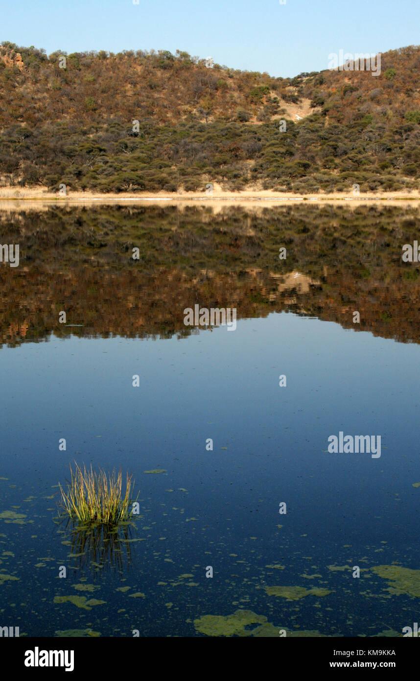 Lake water at Tswaing Crater, Pretoria, South Africa - Stock Image