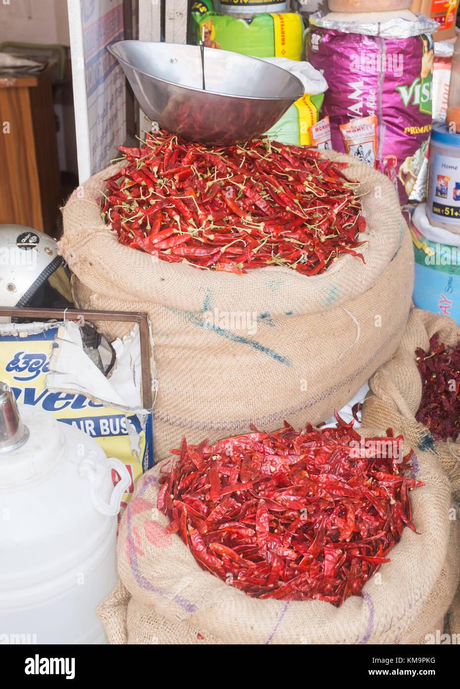 Red chilies in sacks, Mysore, Karnataka, India. - Stock Image