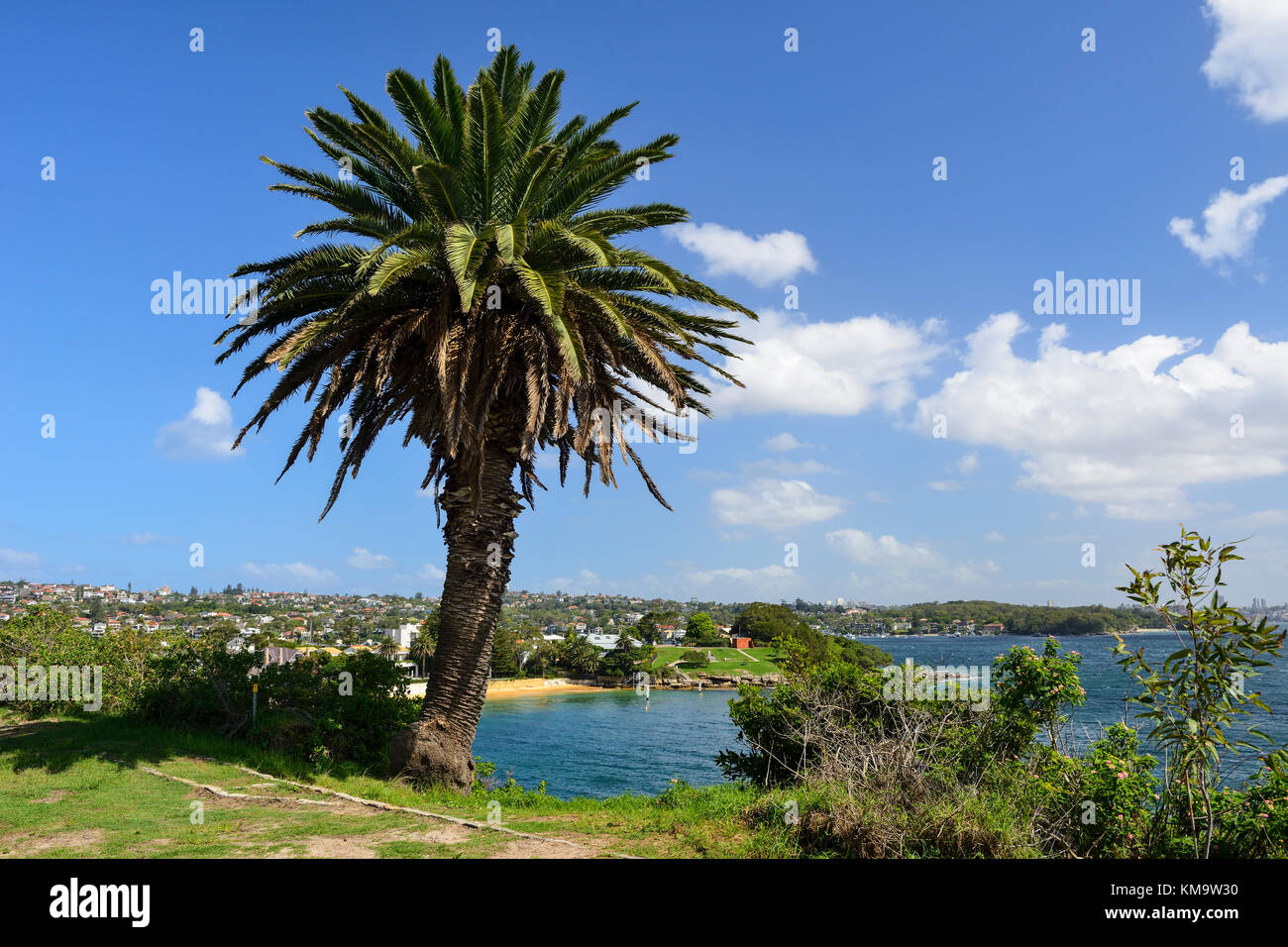Camp Cove in Watsons Bay, an eastern suburb of Sydney, New South Wales, Australia - Stock Image