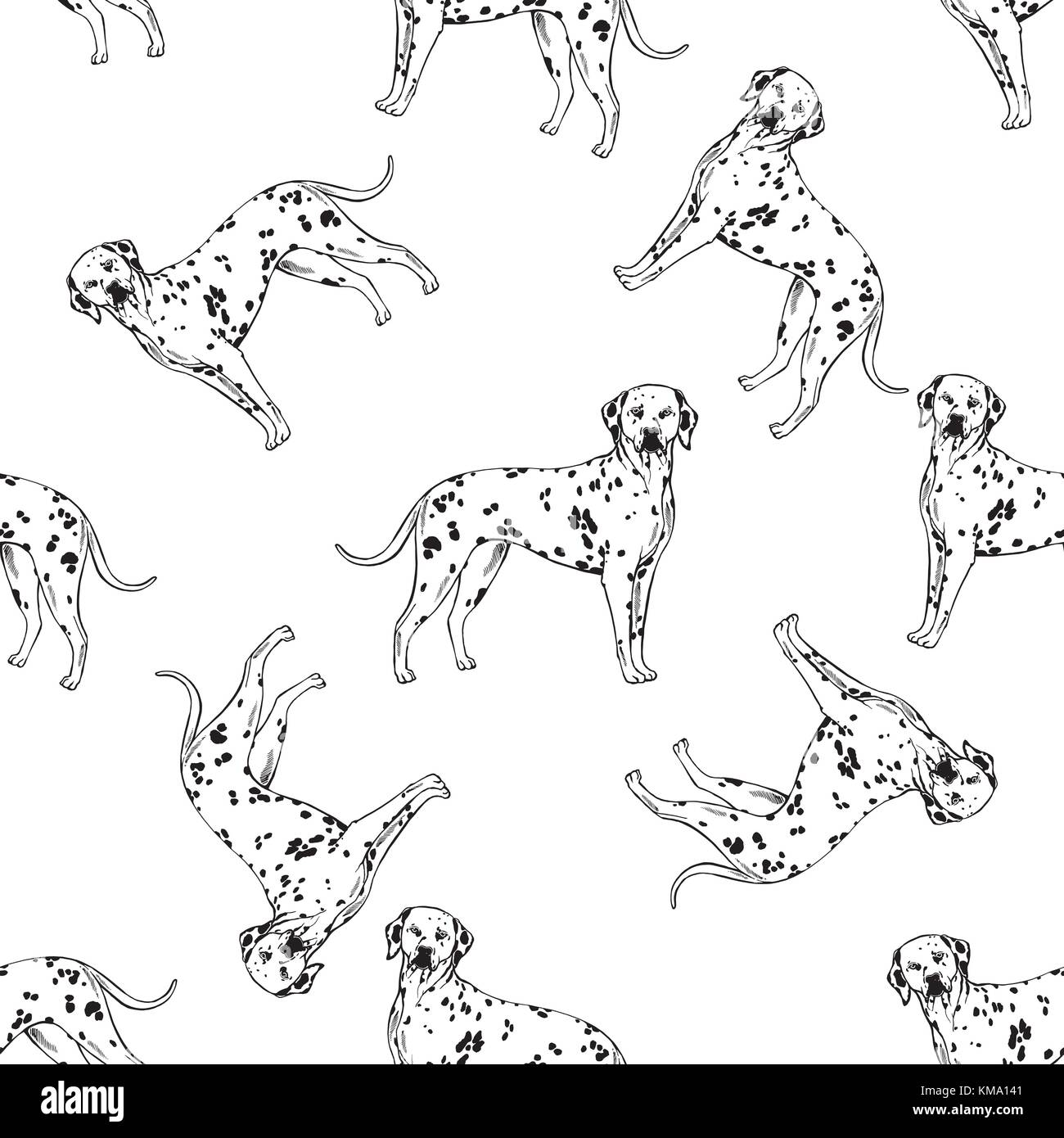 Seamless pattern of hand drawn sketch style dalmatian. Vector illustration isolated on white background. - Stock Vector