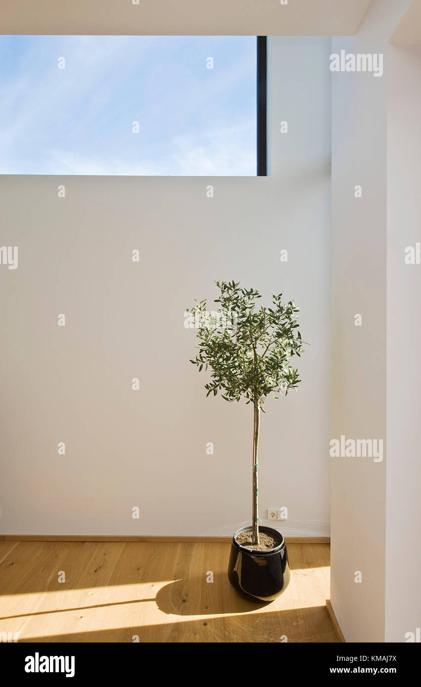 Design Haus Stock Photos & Design Haus Stock Images - Alamy