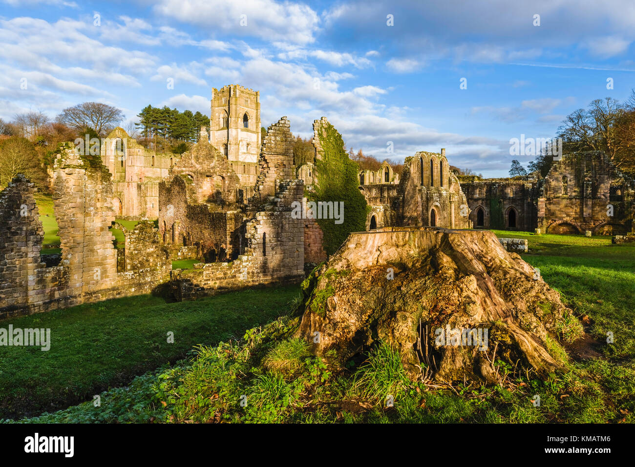 The ruins of Fountains Abbey on a fine autumn morning as viewed from across the river Skell near Ripon, Yorkshire, - Stock Image