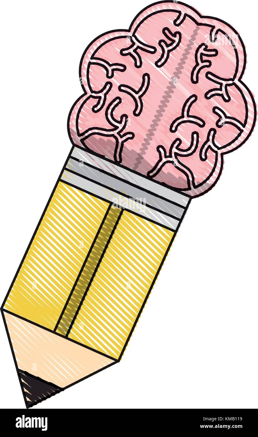 Pencil With A Brain Shaped Eraser - Stock Image