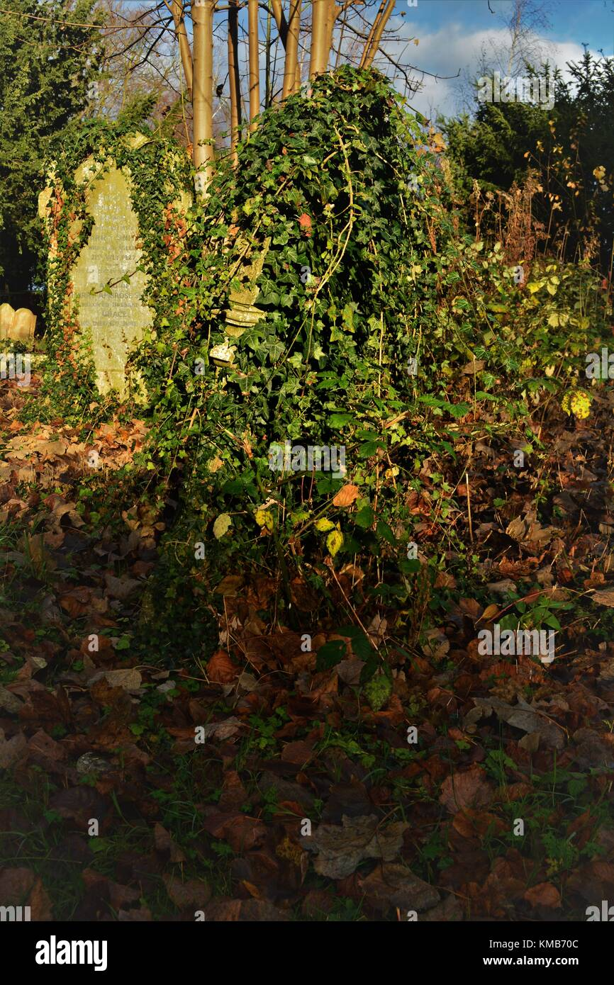 Old English cemetery with old gravestones and lots of undergrowth classic spooky style Stock Photo