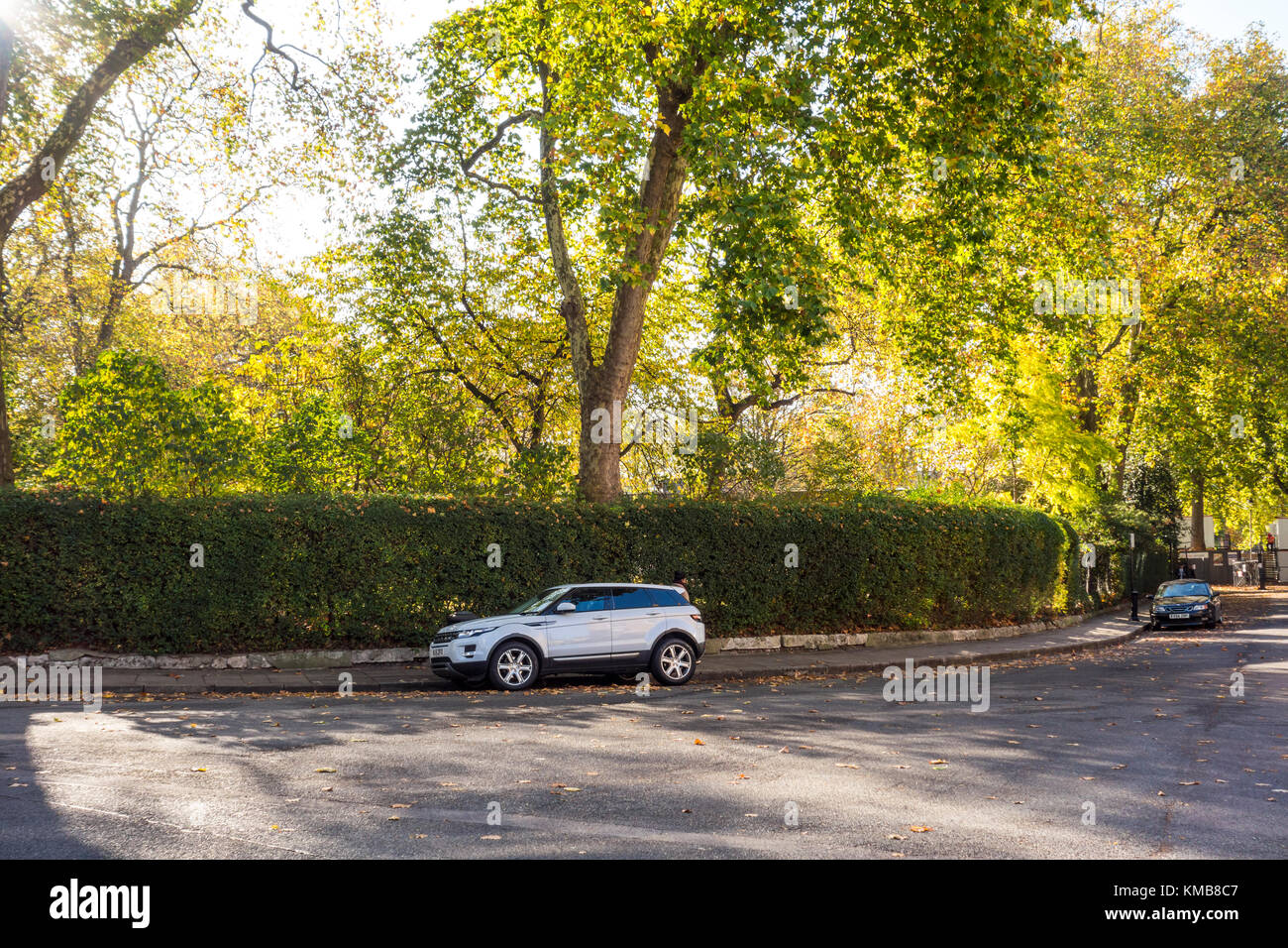 Early autum / fall / autumnal scene in Mecklenburgh Square with green trees and fallen leaves. Bloomsbury, London, - Stock Image