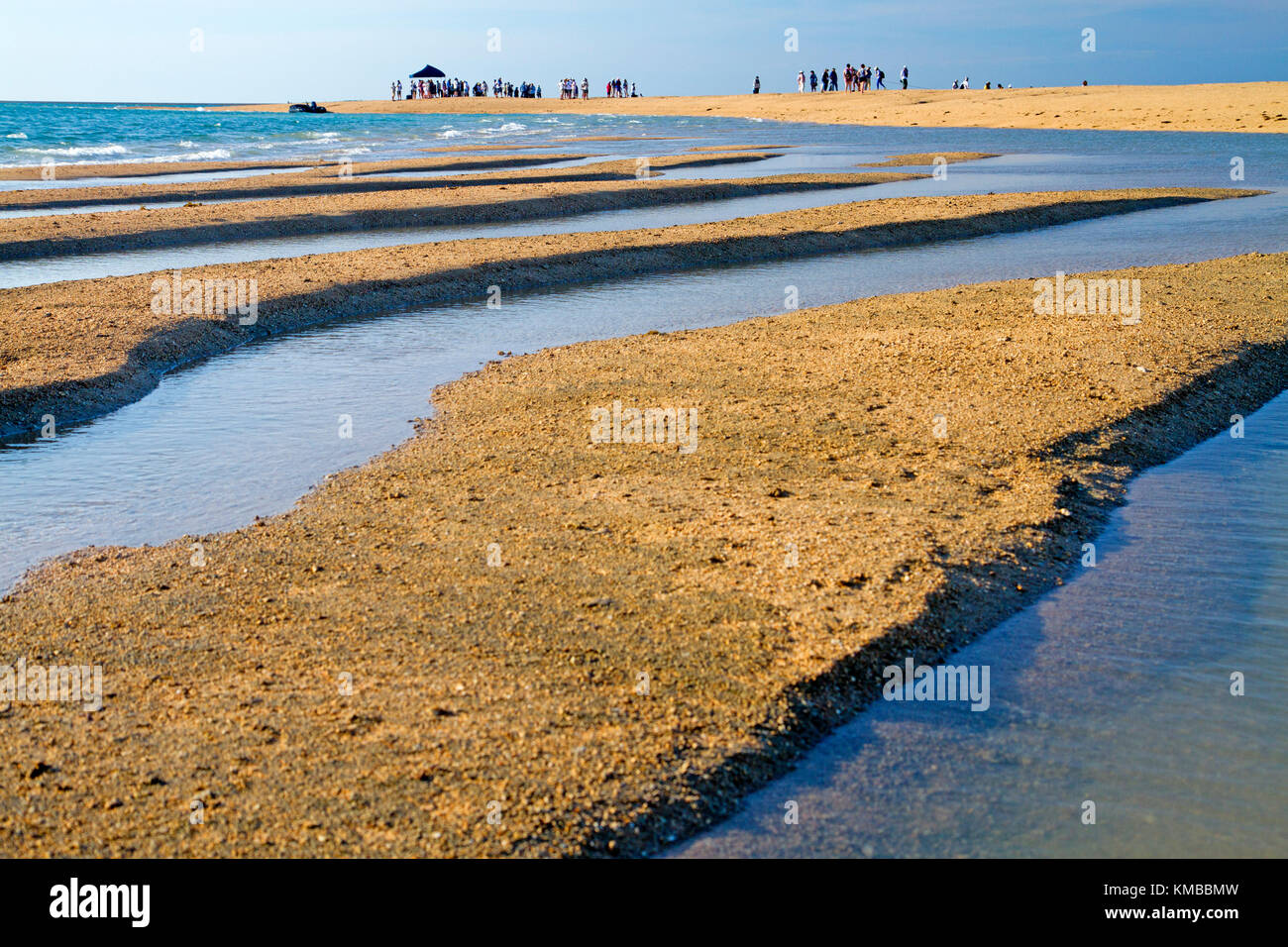 Cruise ship passengers on a sandbar at Montgomery Reef in the Kimberley - Stock Image
