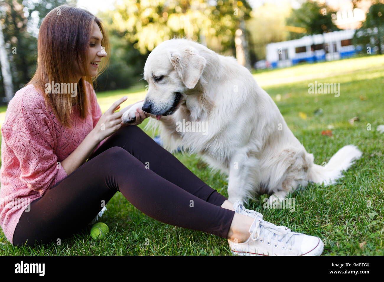 Photo of woman on walk with labrador giving paw - Stock Image