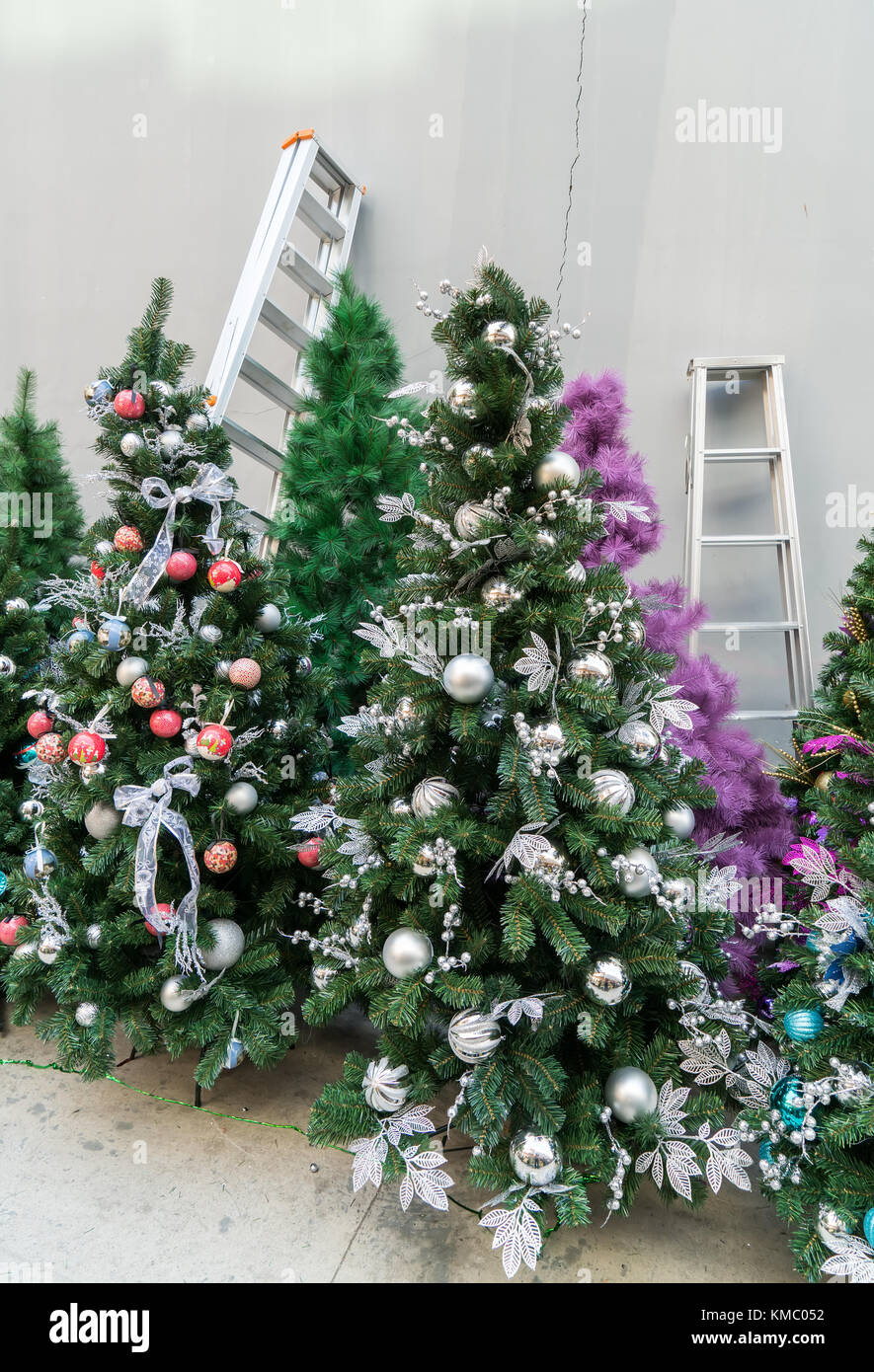christmas decorating tree with ladder stock image