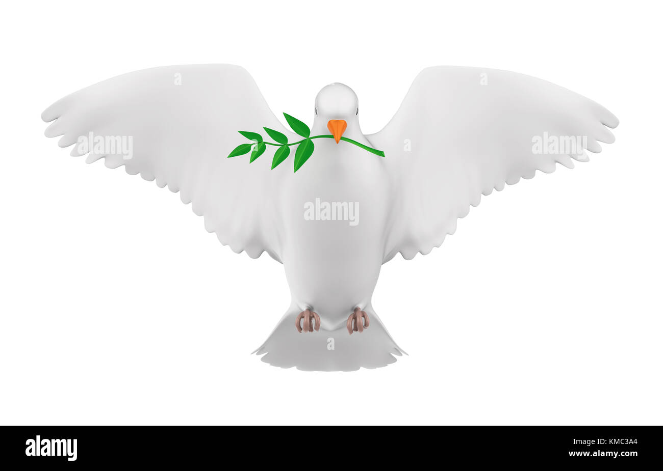 Dove of Peace Isolated - Stock Image