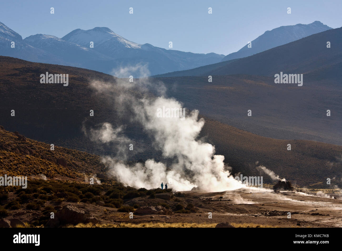 Geysers and geothermal steam vents at the El Tatio Geyser Field at an altitude of 4500m (14764ft) in the Atacama - Stock Image