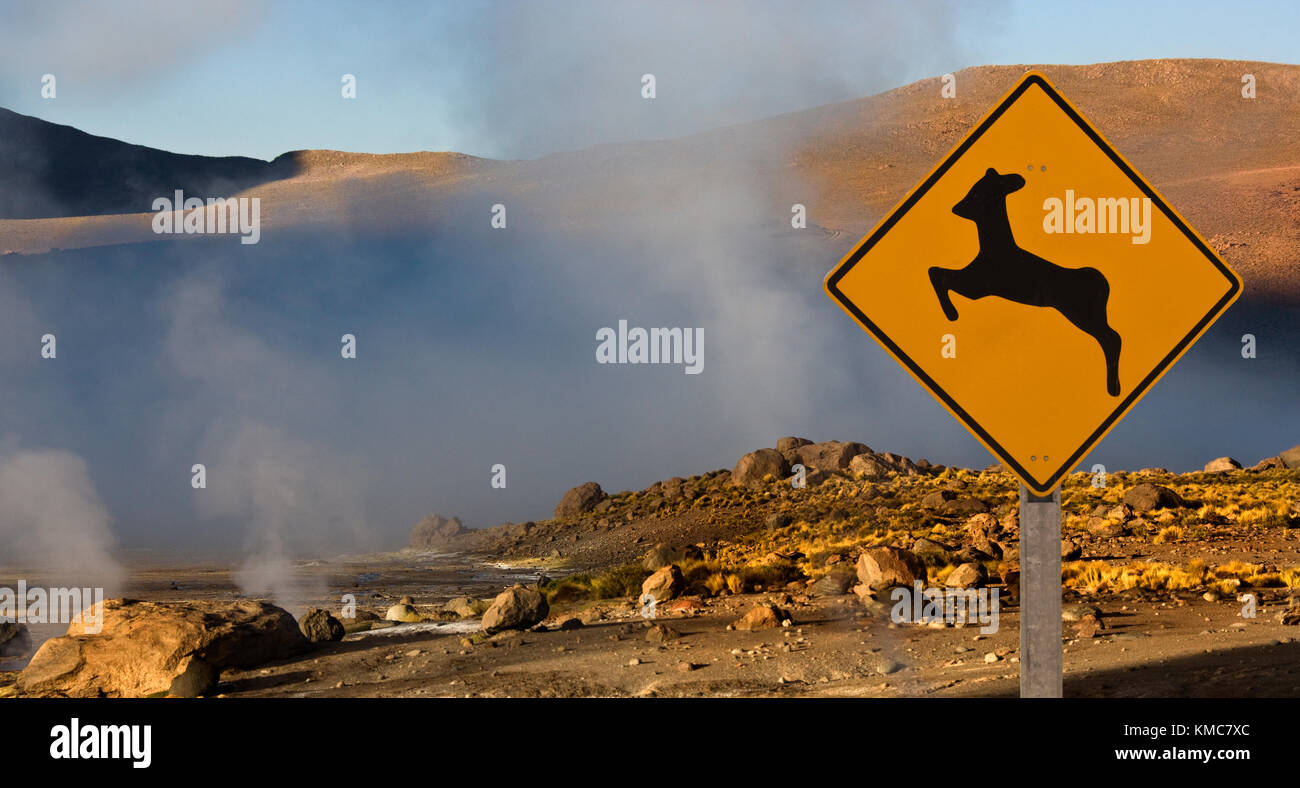 Geo-thermal steam vents at El Tatio Geyser Field in northern Chile. - Stock Image