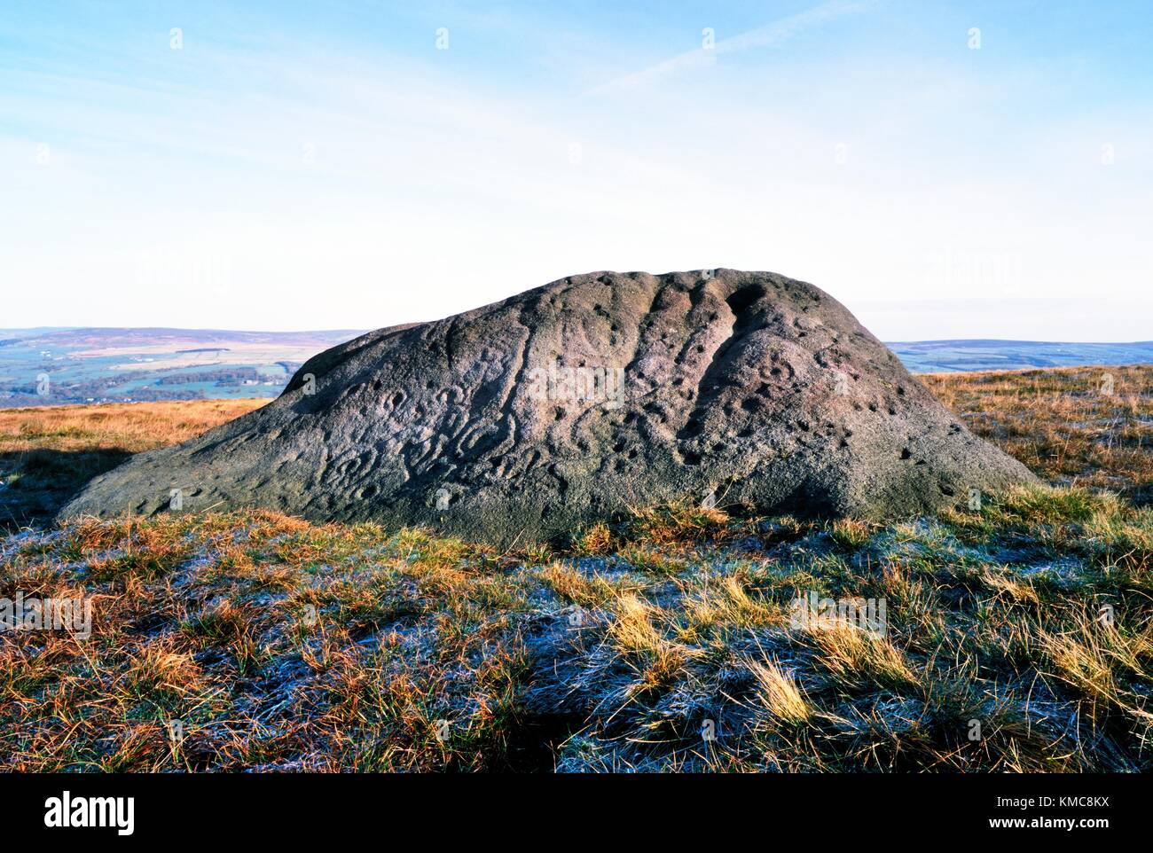 The Badger Stone, Ilkley Moor, West Yorkshire, England. Natural boulder carved with prehistoric cup and ring marks - Stock Image