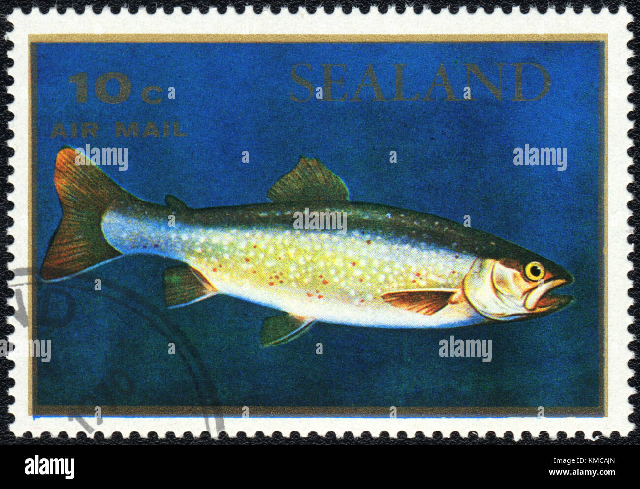 A stamp printed in PRINCIPALITY OF SEALAND shows  a Salmo salar, series, circa 1970 - Stock Image