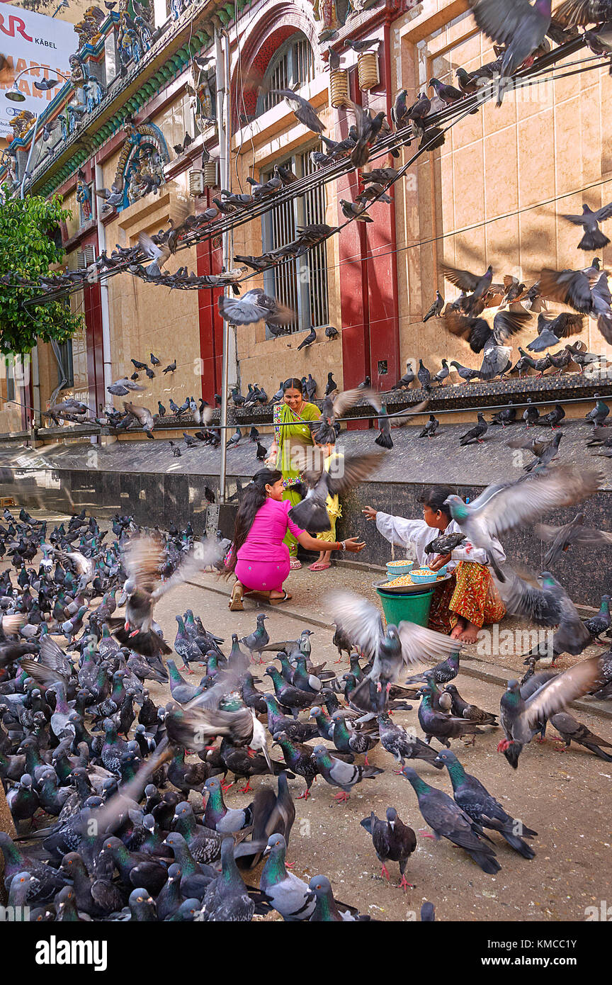 Yangon, Myanmar - 21 October, 2017: Indian passerby family surrounded by hundreds of pigeons. Two street vendors - Stock Image