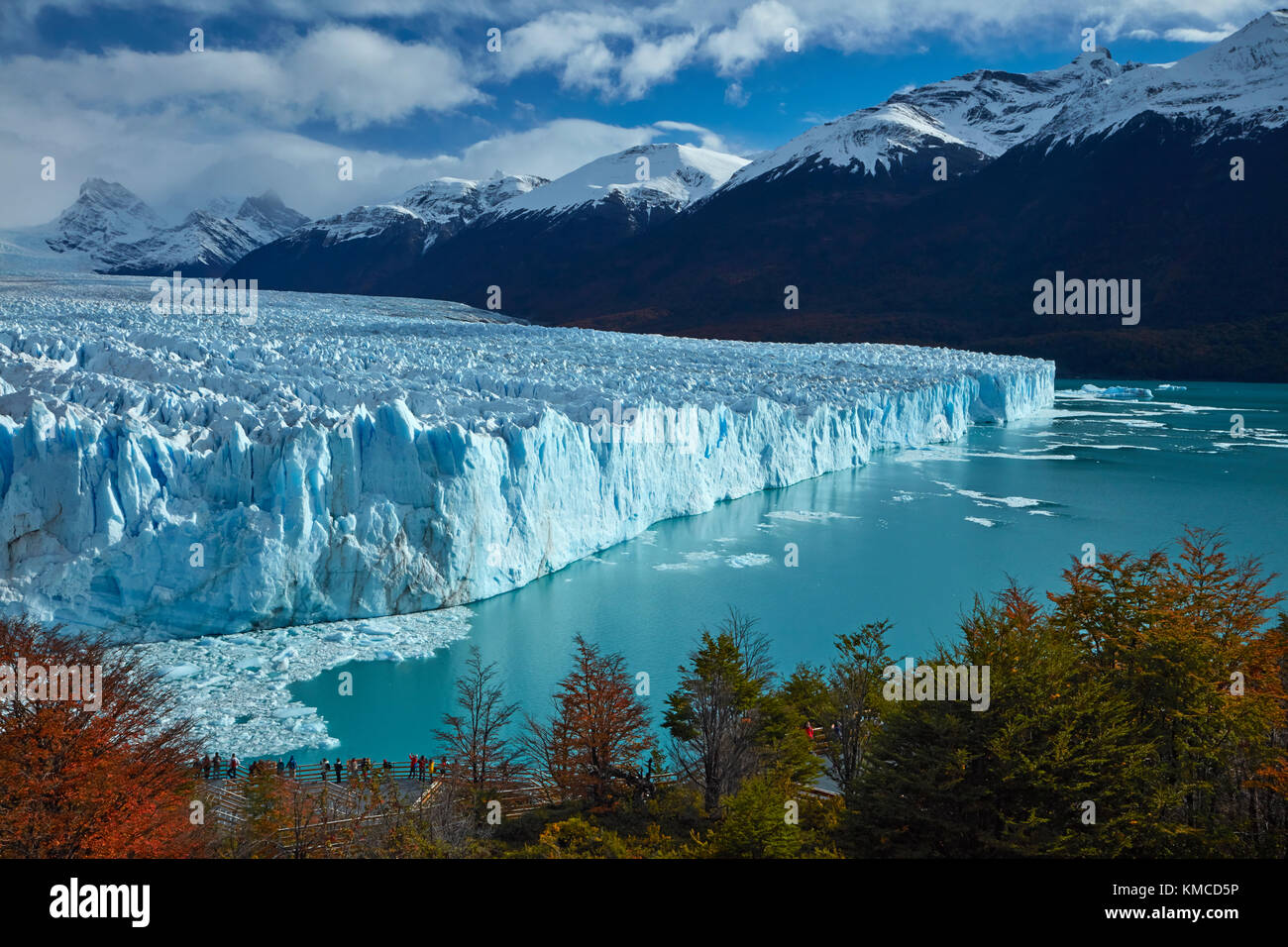 Perito Moreno Glacier, lenga trees in autumn, and tourists on walkway, Parque Nacional Los Glaciares (World Heritage - Stock Image