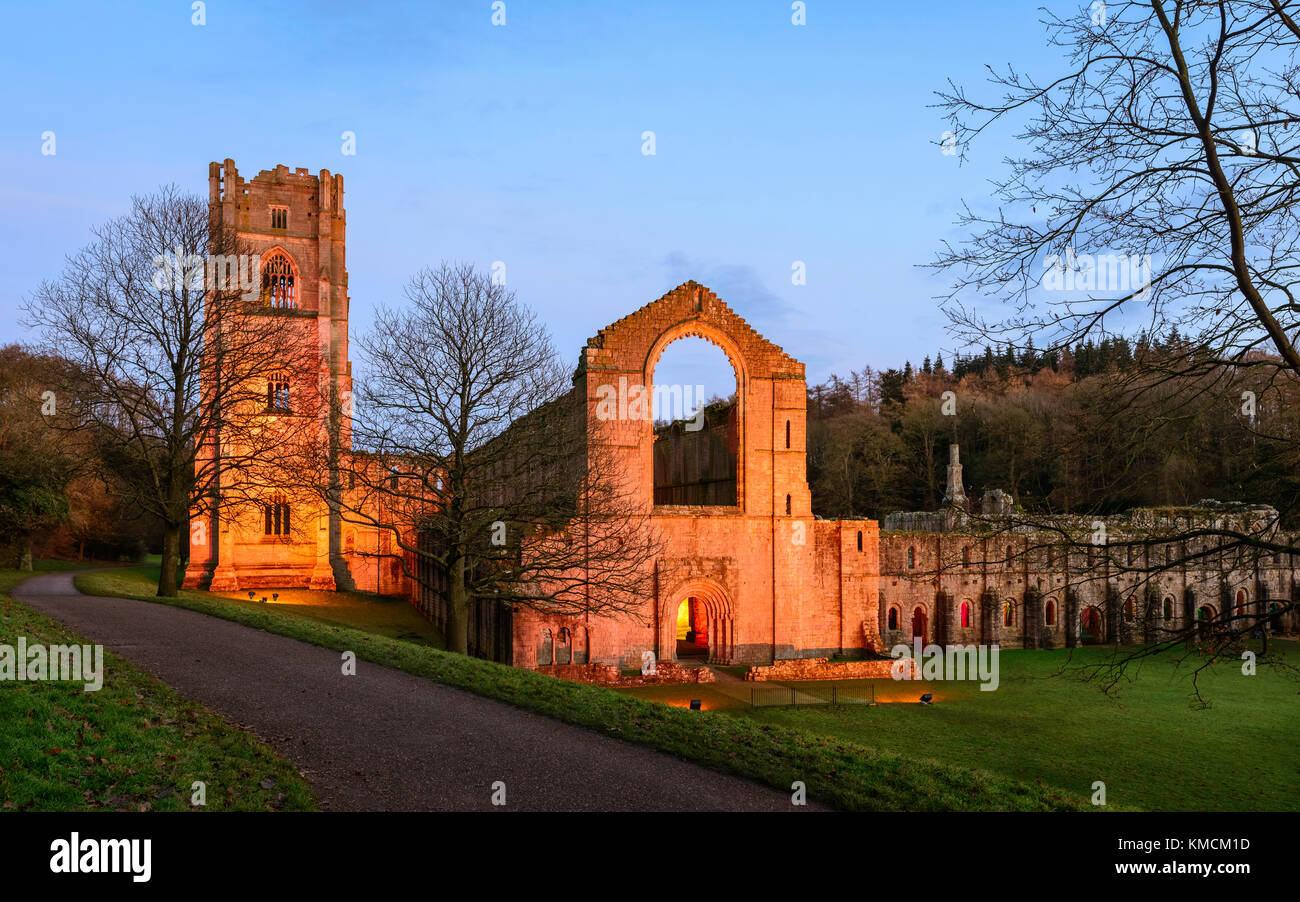 The ruins of Fountains Abbey lit up on a fine autumn evening with elevations lit with flood lights at dusk. - Stock Image