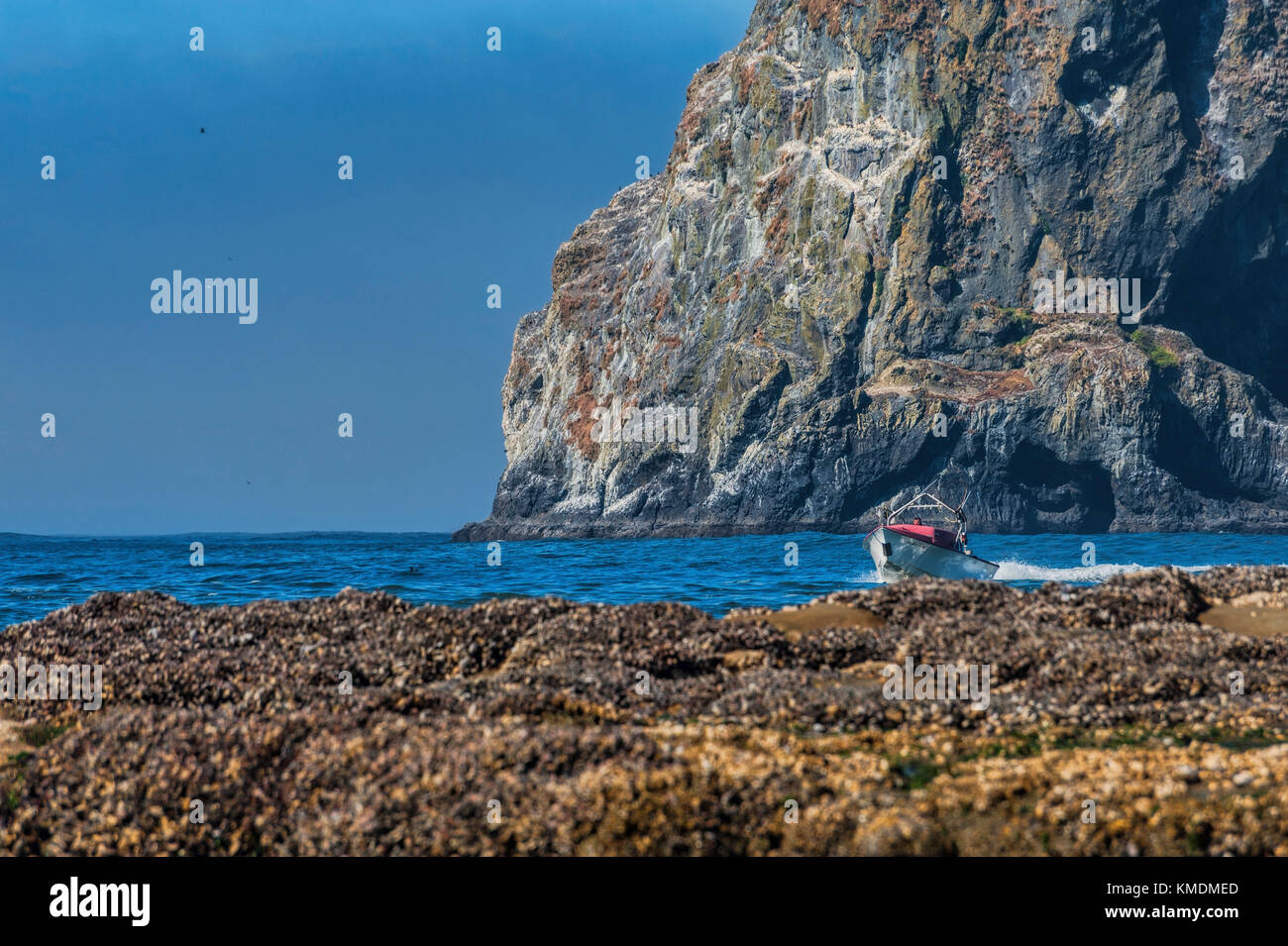 Pacific City, Oregon, USA - July 2, 2015: A dory boat passes in front of Haystack Rock making it's approach - Stock Image