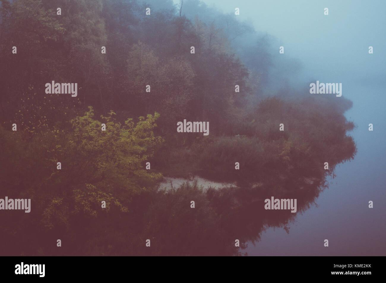 Misty morning on wild island. - Stock Image