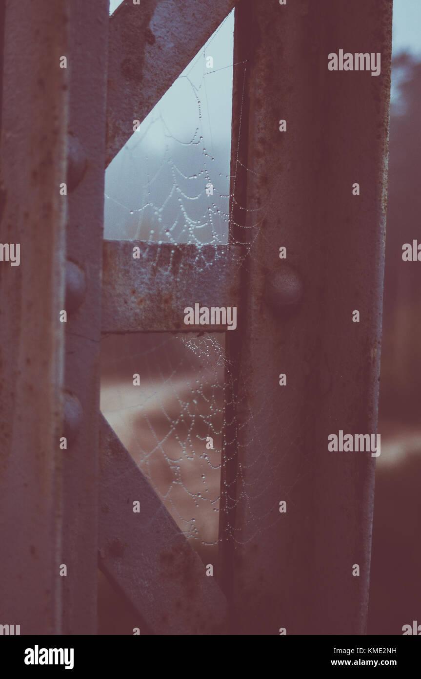 Spider web. Metal bridge  constructions. - Stock Image