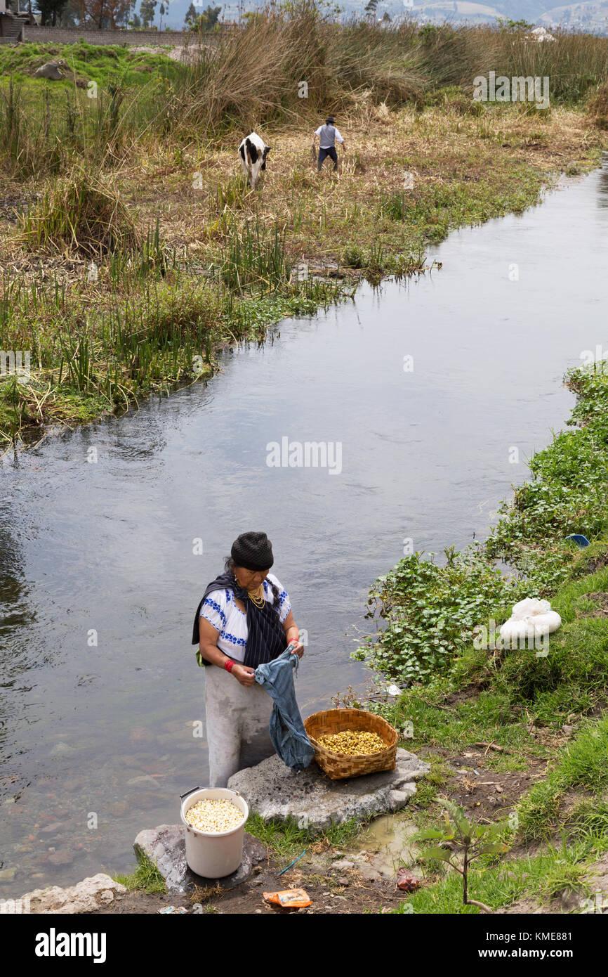 Ecuador South America - village scene, northern Ecuador, indigenous woman washing clothes in a river, Ecuador, South - Stock Image