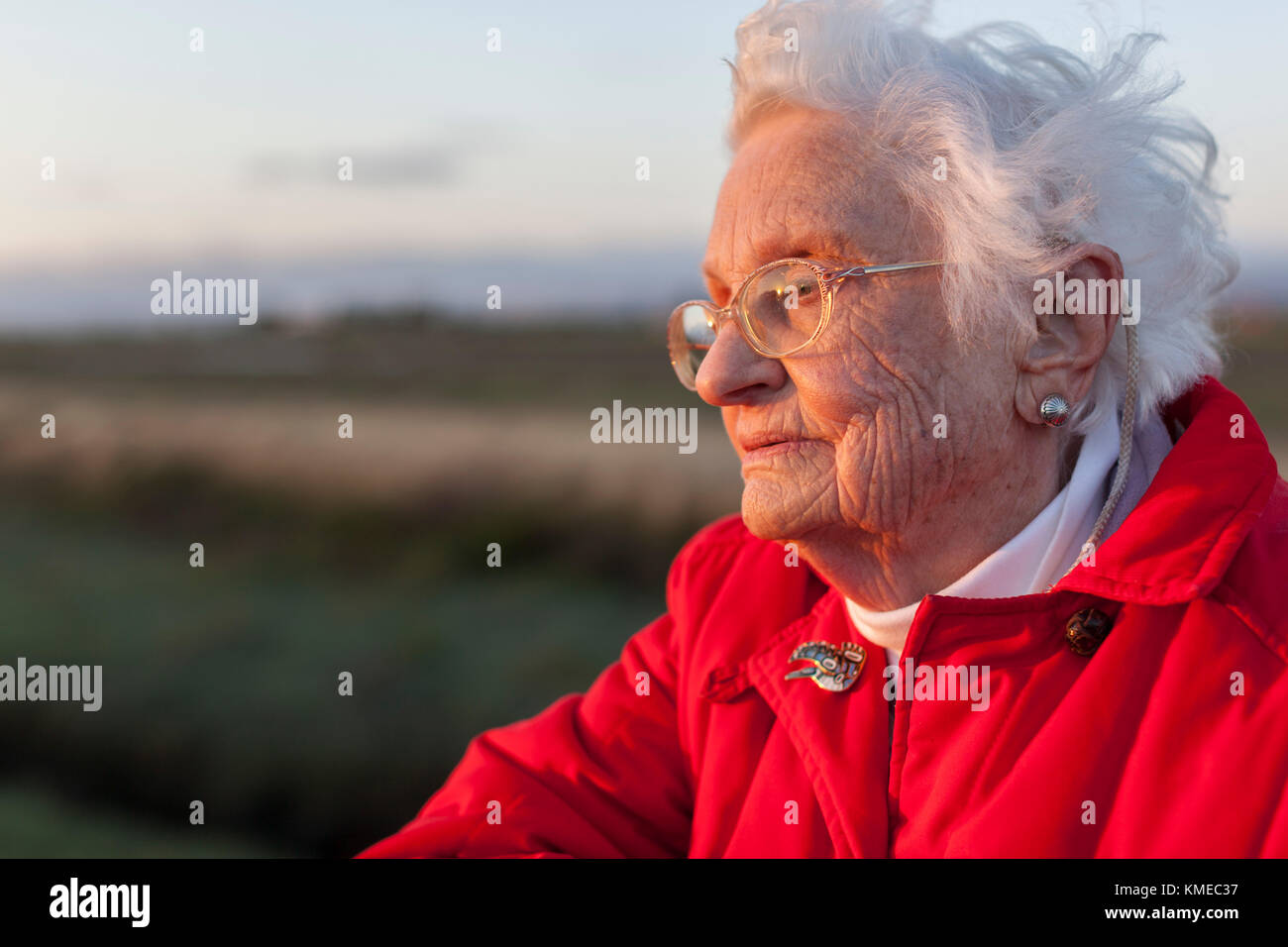 Champion of tidal marshes in Bay Area, Florence lariviere in the lariviere Marsh in Freemont, California, USA - Stock Image