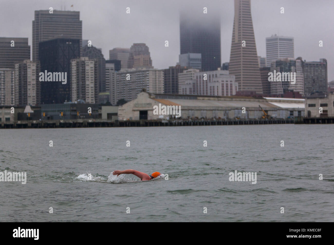 Member of Dolphin Club swimming in Bay Bridge, San Francisco, California, USA - Stock Image
